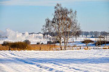 Rasender Roland im Winter bei Posewald auf Rügen von GH Foto & Artdesign