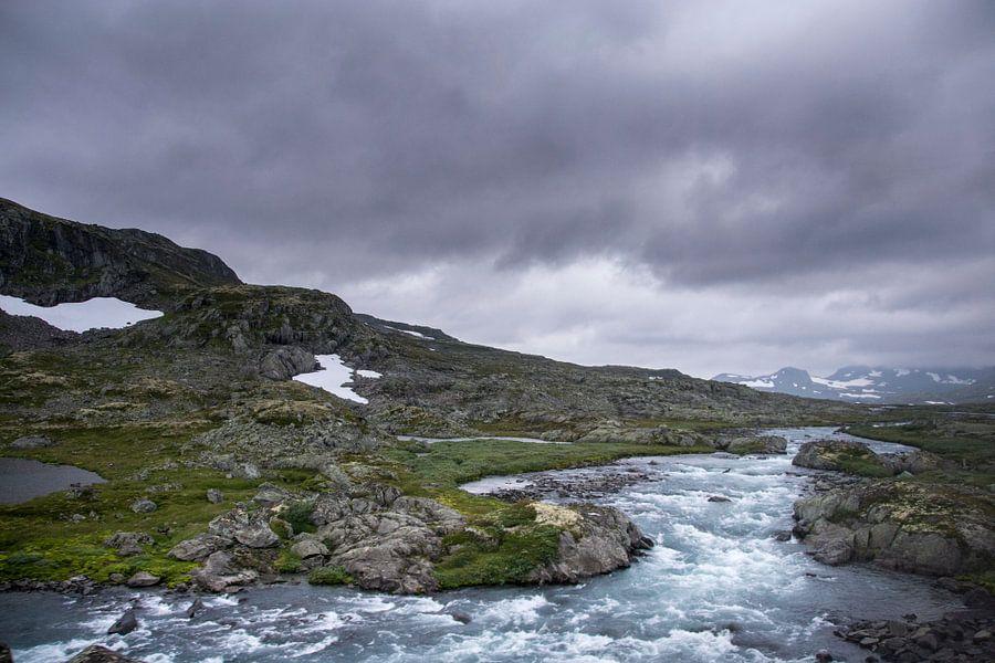 Woeste beek in Noorwegen