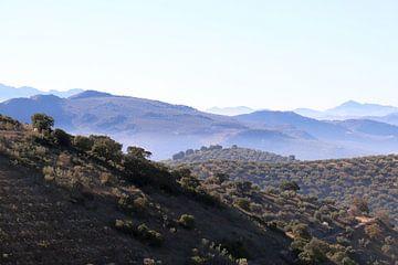 Blaue Berge in Andalusien von Jan Katuin