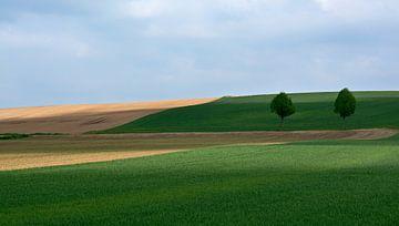 'Landschaft mit 2 Bäumen'. von Jacques Vledder