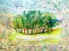 Intiem landschap van Eva van den Hamsvoort thumbnail