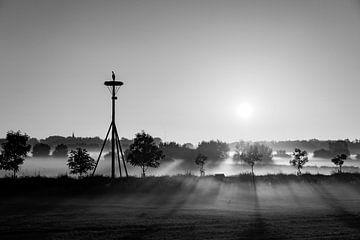 Sonnenaufgang Ooij bei Nimwegen schwarz-weiß von Henk Kersten