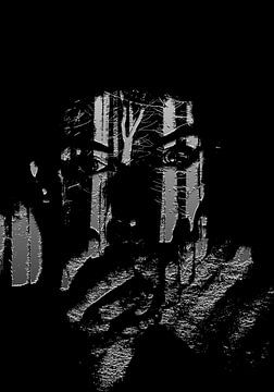 In Black no. 001 van PictureWork - Digital artist