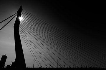 Erasmus-Brücke Rotterdam von Bert Weber