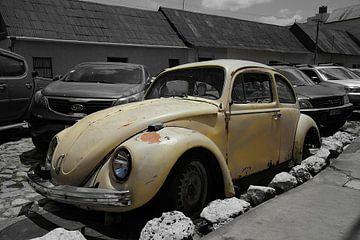 Käfer auf der Straße von Kjeld Vossen
