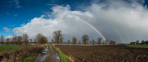 regen en zonneschijn van Lex Schulte