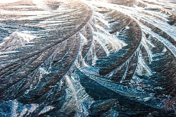Type de paysage 3