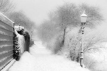 Lass es schneien! von Irene Lommers
