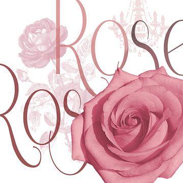 Elegante Rose von christine b-b müller