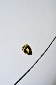 Insigne Lamborghini avec le célèbre taureau sur