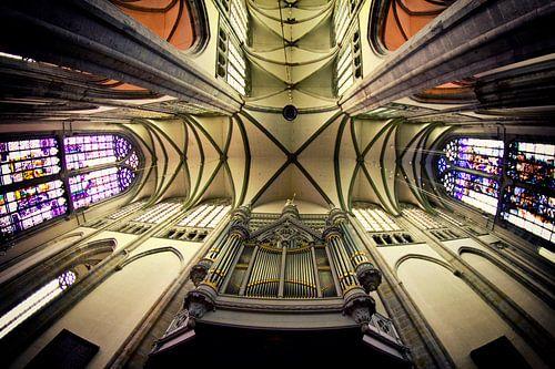 Omhoog kijken in de Utrechtse Domkerk II