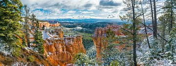 Winter im Bryce Canyon, Vereinigte Staaten von Amerika von Rietje Bulthuis