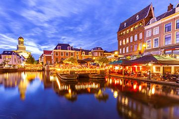 Stadsgezicht binnenstad van Leiden van Hilda Weges