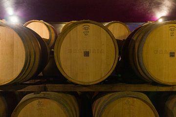 Tonneaux de vin toscan sur Michelle van Seters