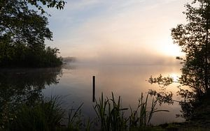 Brouillard matinal au-dessus du Belversven