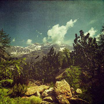 Italian Alps near Chiareggio - Lombardia van Dirk Wüstenhagen