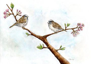 Mussen in kersenboom van Sandra Steinke
