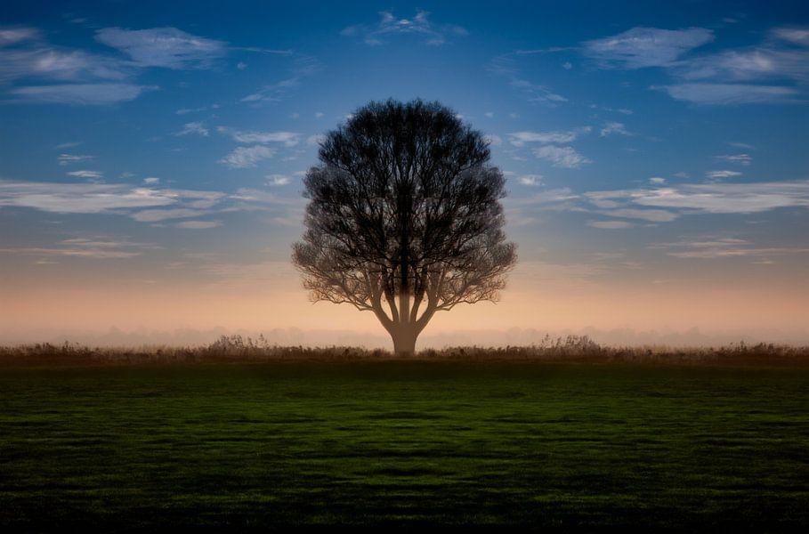 Zonsopgang in IJlst in Friesland met een boom en een oranje achtergrond. One2expose Wout Kok Photogr van Wout Kok