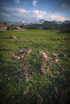 Asturies Pics d'Europe Covadonga sur Jean Claude Castor