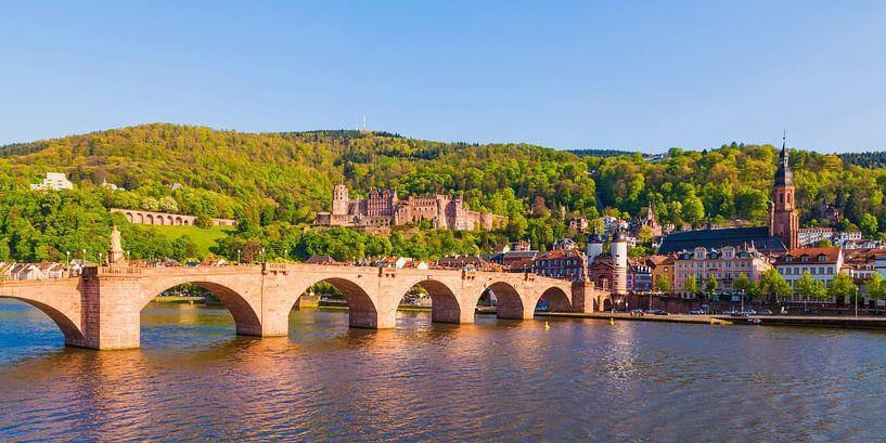 Cityscape of Heidelberg in Germany van Werner Dieterich