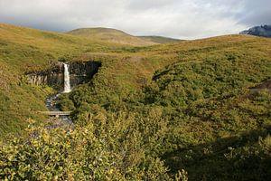 Organ waterfall Iceland