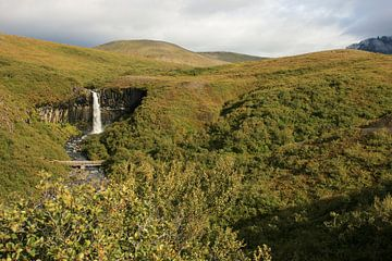 Svartifoss IJsland van Louise Poortvliet