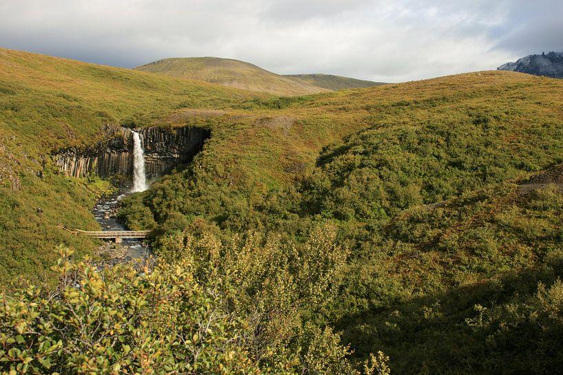 Organ waterfall Iceland sur Louise Poortvliet