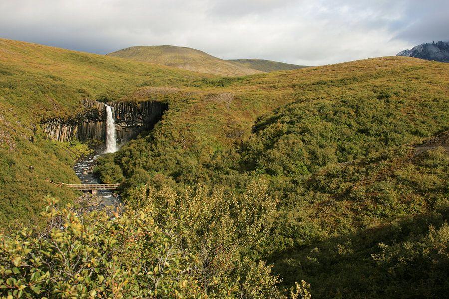 Svartifoss IJsland