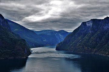 Donkere Noorse fjorden van Naomi Elshoff