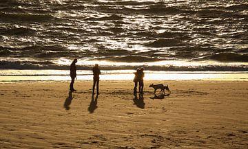 Am Strand Zoutelande von