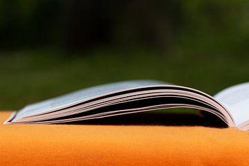 Pagina's van het boek van Thomas Heitz