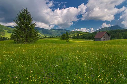 Austria Tirol - Tannheimer Tal van