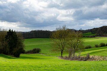 Hügellandschaft in den Ardennen von Ton de Koning