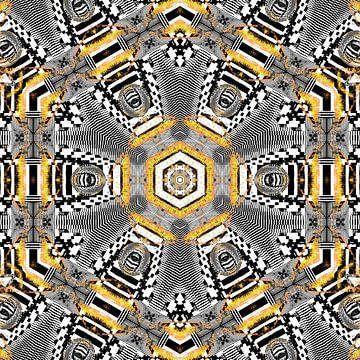 Zebra mandala van Nina IoKa