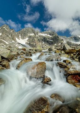 Bergbeek op de weg naar de Sidelenhütte, kanton Uri van Pascal Sigrist - Landscape Photography