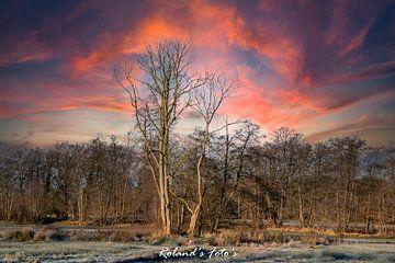 Fire in the Sky van Roland's Foto's