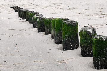 Wellenbrecher am Strand von Cadzand-Bad von