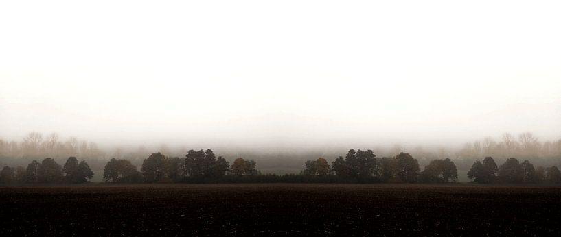 MISTY OCTOBER DAY-V van Pia Schneider