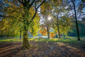 Herbst im Euromast Park von Annette Roijaards