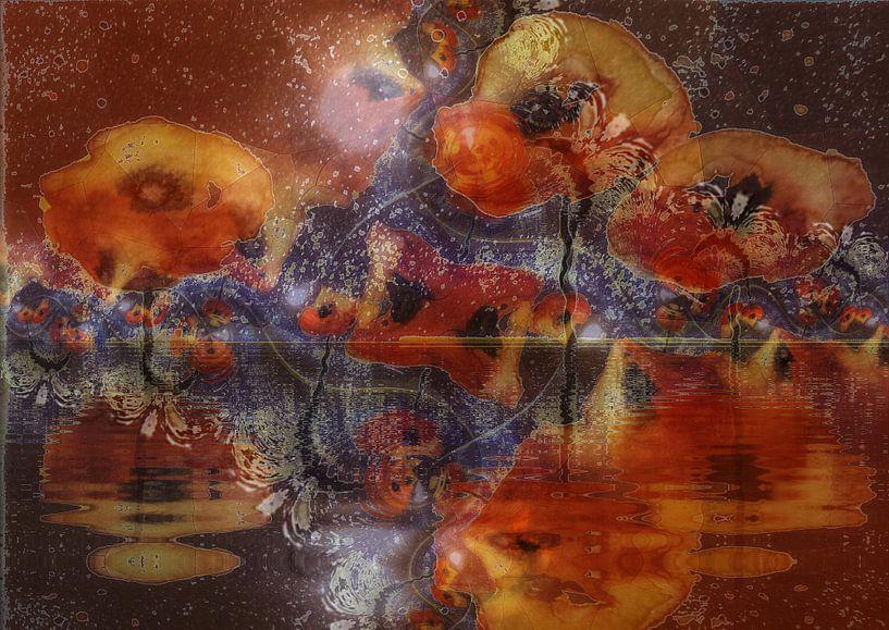 Klaprozen - Water klaproos van Christine Nöhmeier