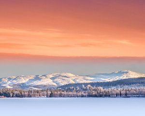 Winter in Zweden van Hamperium Photography