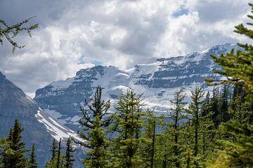 Wolkenlucht boven Canadese Rocky Mountains van Arjen Tjallema