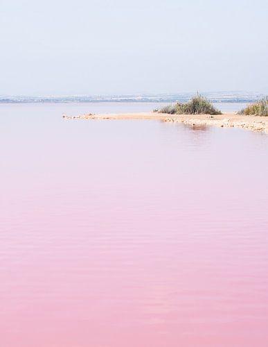Roze zoutmeer van Torrevieja, Spanje van