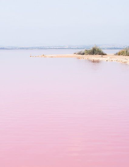 Roze zoutmeer van Torrevieja, Spanje van Anki Wijnen