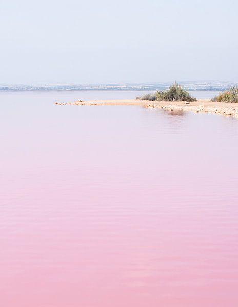 Roze zoutmeer van Torrevieja, Spanje