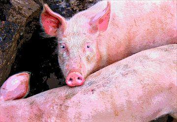 gedomesticeerde varkens van Leopold Brix