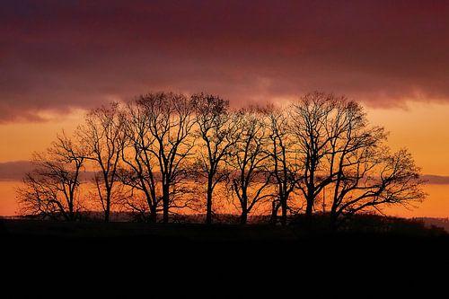 december zonsondergang