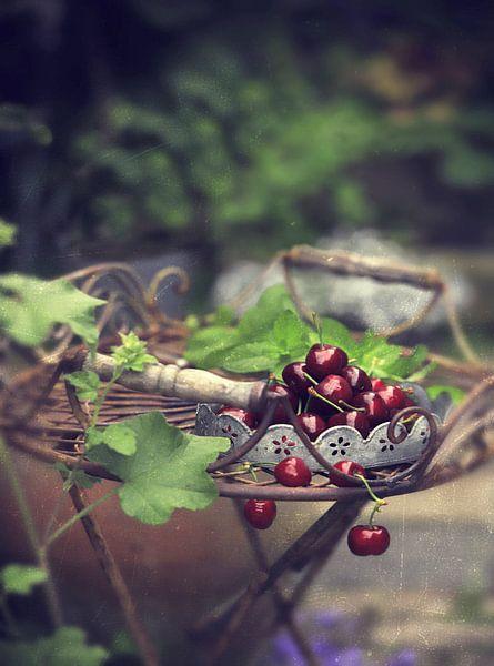 kultivieren kultivieren von Els Fonteine