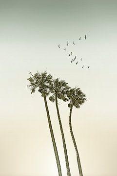 Vintage Palmen im Sonnenuntergang von Melanie Viola
