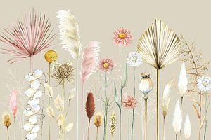 Getrocknete Blumen Pampasgräser
